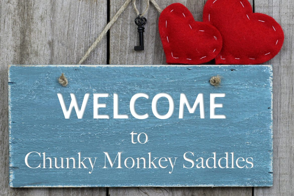 Welcome to Chunky Monkey Saddles